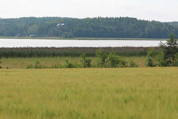 Baltic Sea agriculture